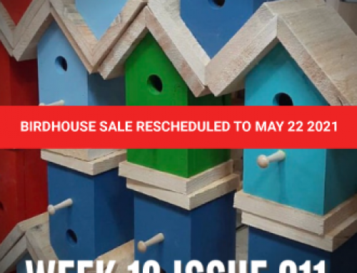The Art Truck and Birdhouses Sale